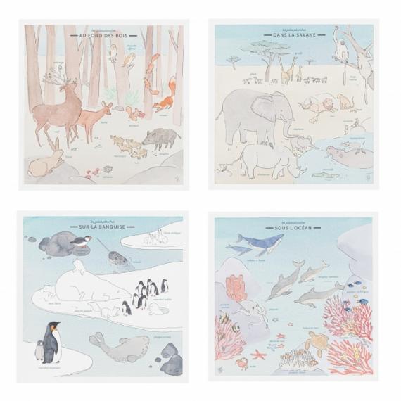 Pack 4 mini planches Faune sauvage