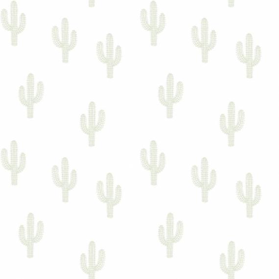 Papier Peint Cactus