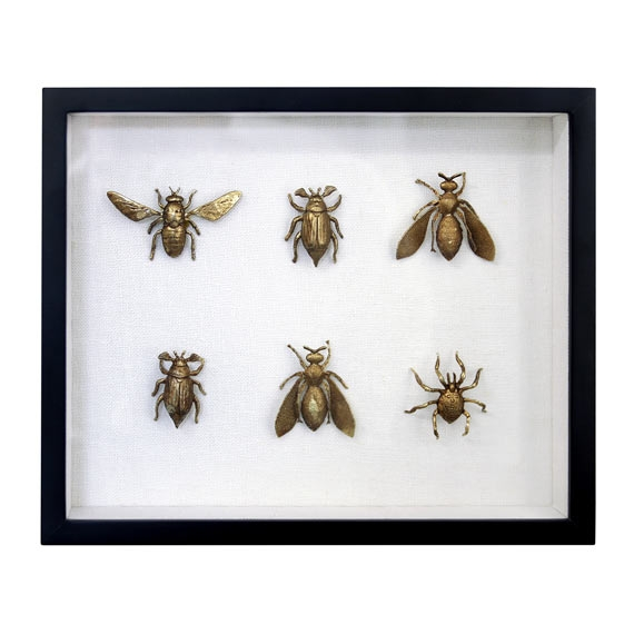 Tableau Insects