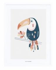 Affiche encadrée Toucan