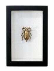 Tableau Beetle