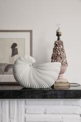 Vase Shell