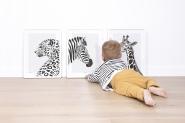 Affiche Encadrée La Girafe