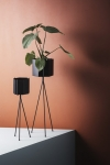 Plant Stand XL