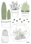 Planche De Stickers Cactus en pot