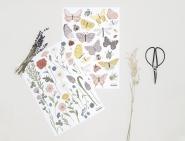 Planche de stickers Fleurs bouton d'or