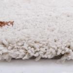 Tapis Wooly 100x150